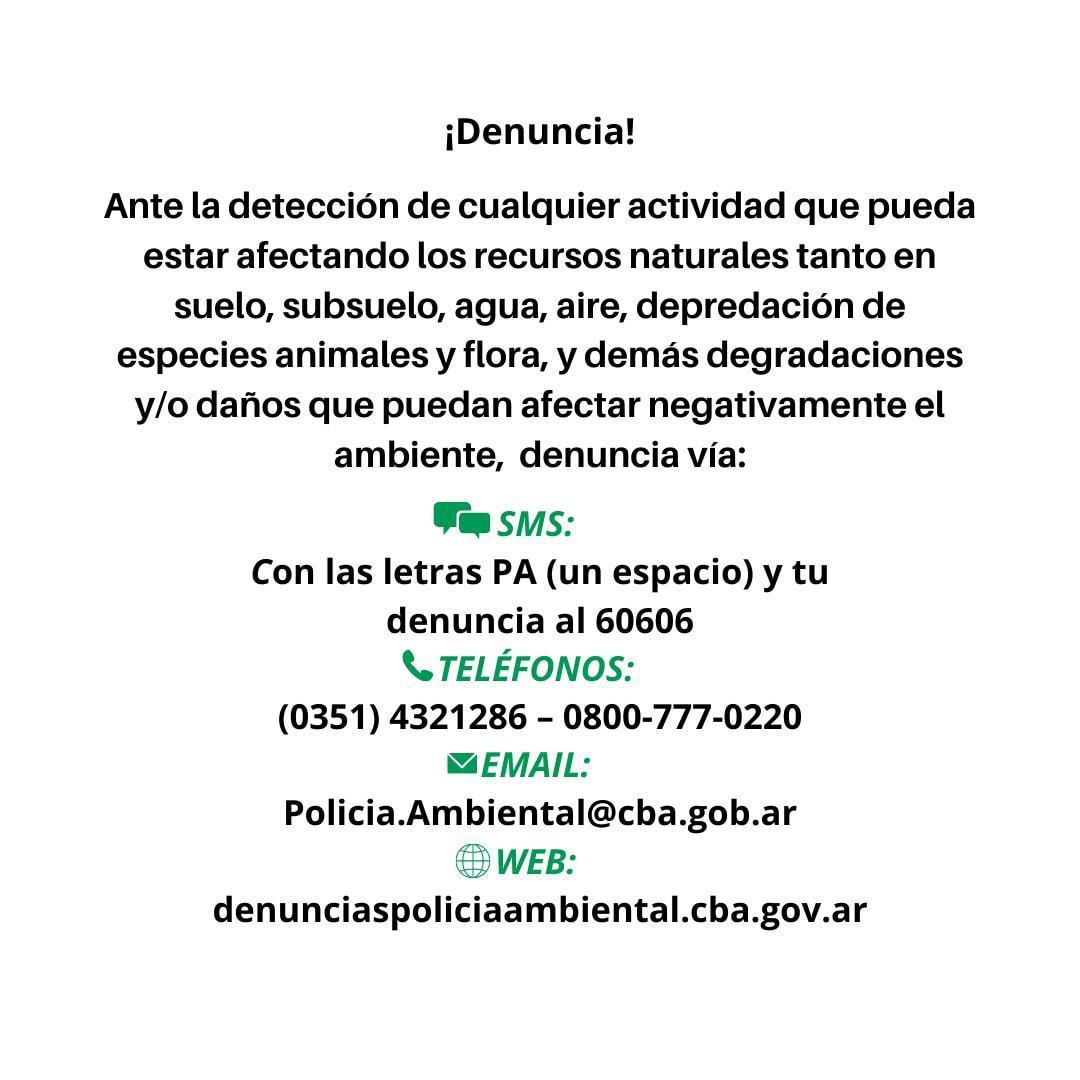 Denucnia